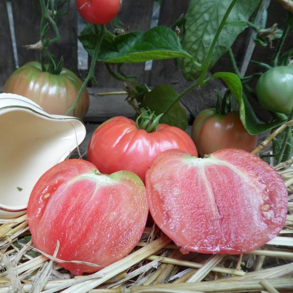 Tomate coeur de boeuf la bonne graine - Planter des tomates coeur de boeuf ...
