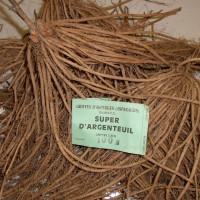 Asperge Super d'Argenteuil