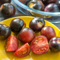 Tomate INDIGO™ Cherry Drops