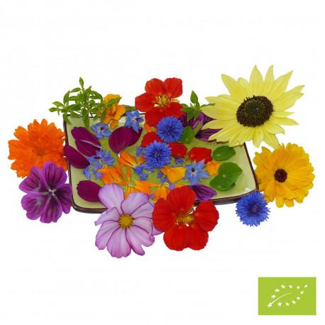 Fleurs en cuisine bio